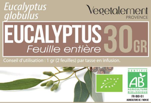 Tisane d'eucalicalyptus globulus BIO Végétalement Provence